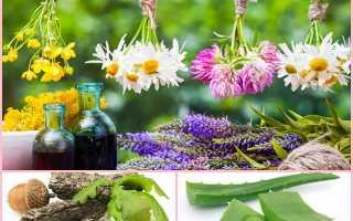 Травы для полоскания рта