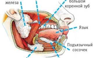 Воспаление протока слюнной железы