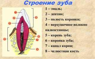 Периостит зуба лечение