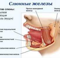 Заболевания слюнных желез симптомы