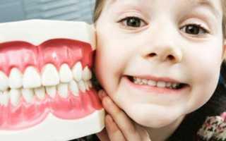 Сколько должно быть молочных зубов
